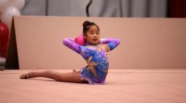 Rhythmic Gymnastics Photo Free
