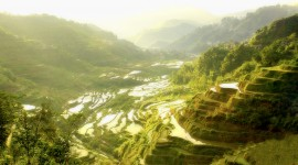 Rice Terraces Wallpaper For Desktop