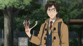 Sei No Kakuritsu Picture Download