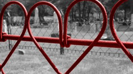 The Hearts On The Fence Wallpaper#2
