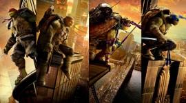 4K Ninja Turtles Image#2