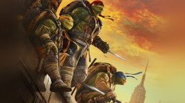 4K Ninja Turtles Photo Free