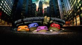 4K Ninja Turtles Wallpaper Background