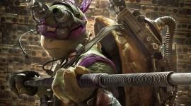 4K Ninja Turtles Wallpaper HQ
