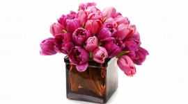 Bouquet In A Vase Wallpaper