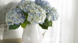 Bouquet In A Vase Wallpaper Gallery