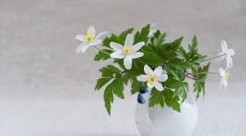 Bouquet In A Vase Wallpaper#1