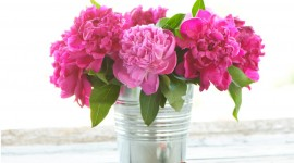 Bouquet In A Vase Wallpaper#4