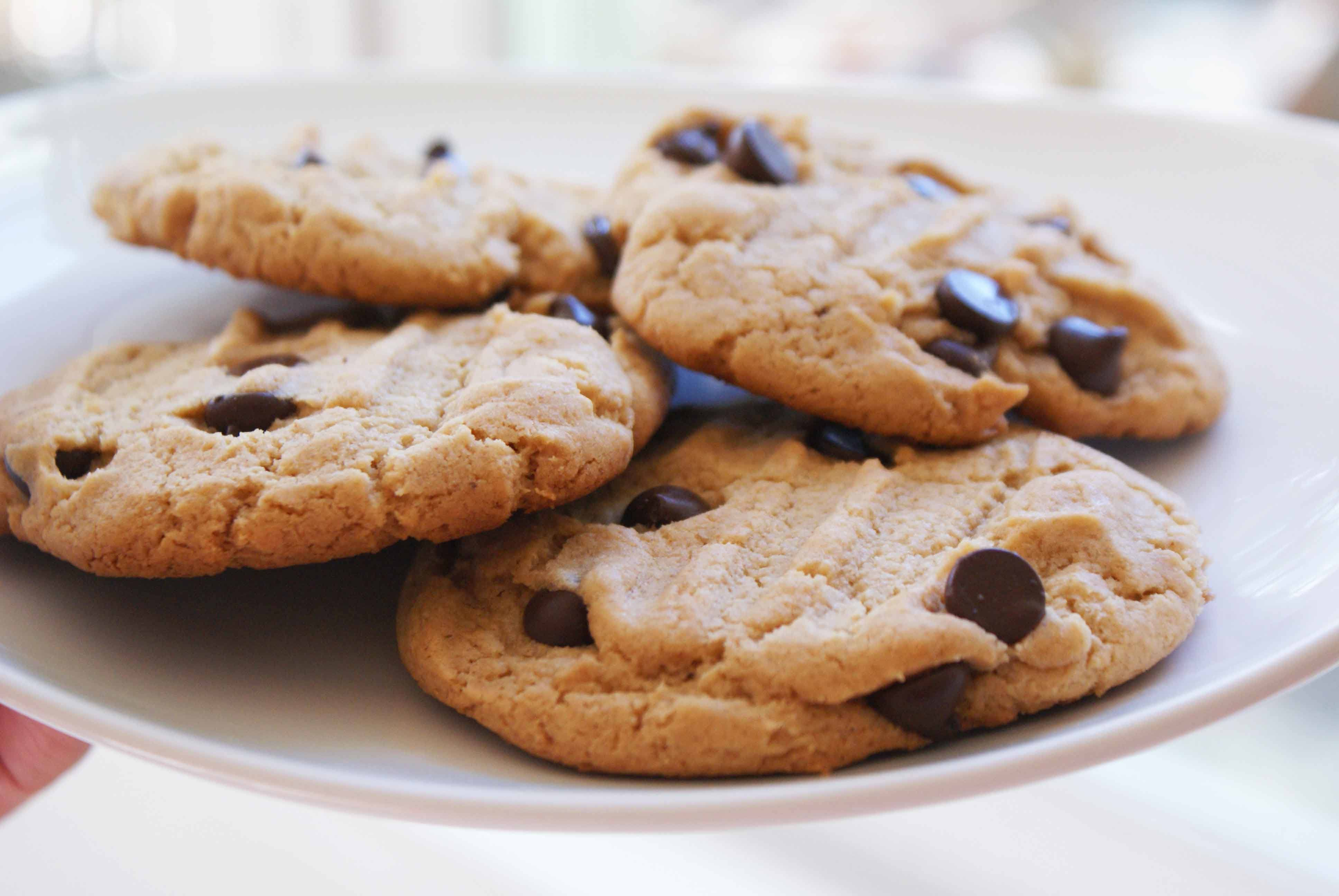 chocolate chip cookie wallpapers high quality download free