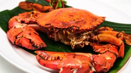 Crab Dishes Wallpaper
