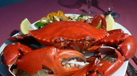 Crab Dishes Wallpaper For PC