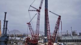 Cranes Pics