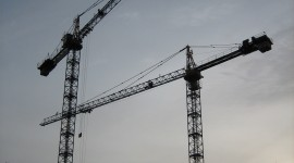 Cranes Wallpaper For Android