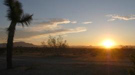 Dawn In The Desert Photo