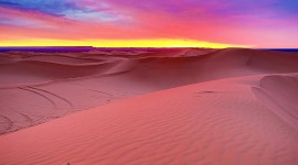 Dawn In The Desert Wallpaper Full HD