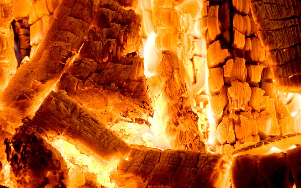 Fire Woods wallpapers HD