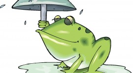 Frog With Umbrella Image