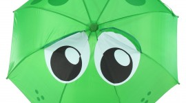 Frog With Umbrella Wallpaper For Mobile