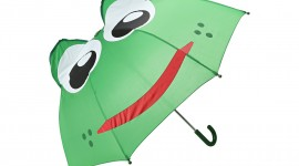 Frog With Umbrella Wallpaper Gallery