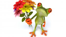 Frogs And Flowers Aircraft Picture