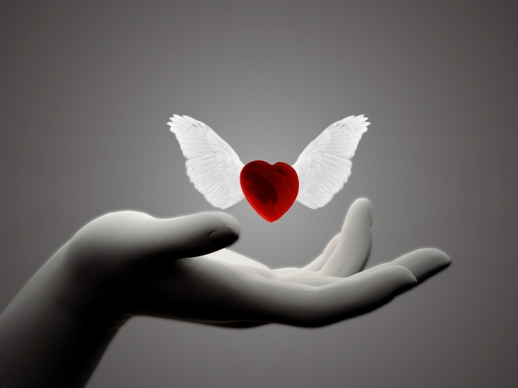 Heart With Wings Wallpapers High Quality Download Free