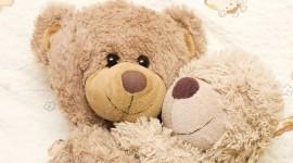Love Bears Desktop Wallpaper For PC