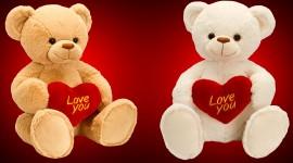 Love Bears Desktop Wallpaper HD
