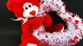 Love Bears Photo
