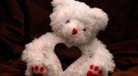 Love Bears Photo Download