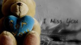 Love Bears Wallpaper