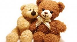 Love Bears Wallpaper Full HD