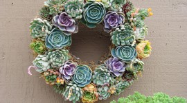 Wreaths Wallpaper For PC