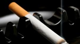 4K Cigarette Smoke Photo Free
