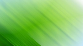 4K Green Desktop Wallpaper