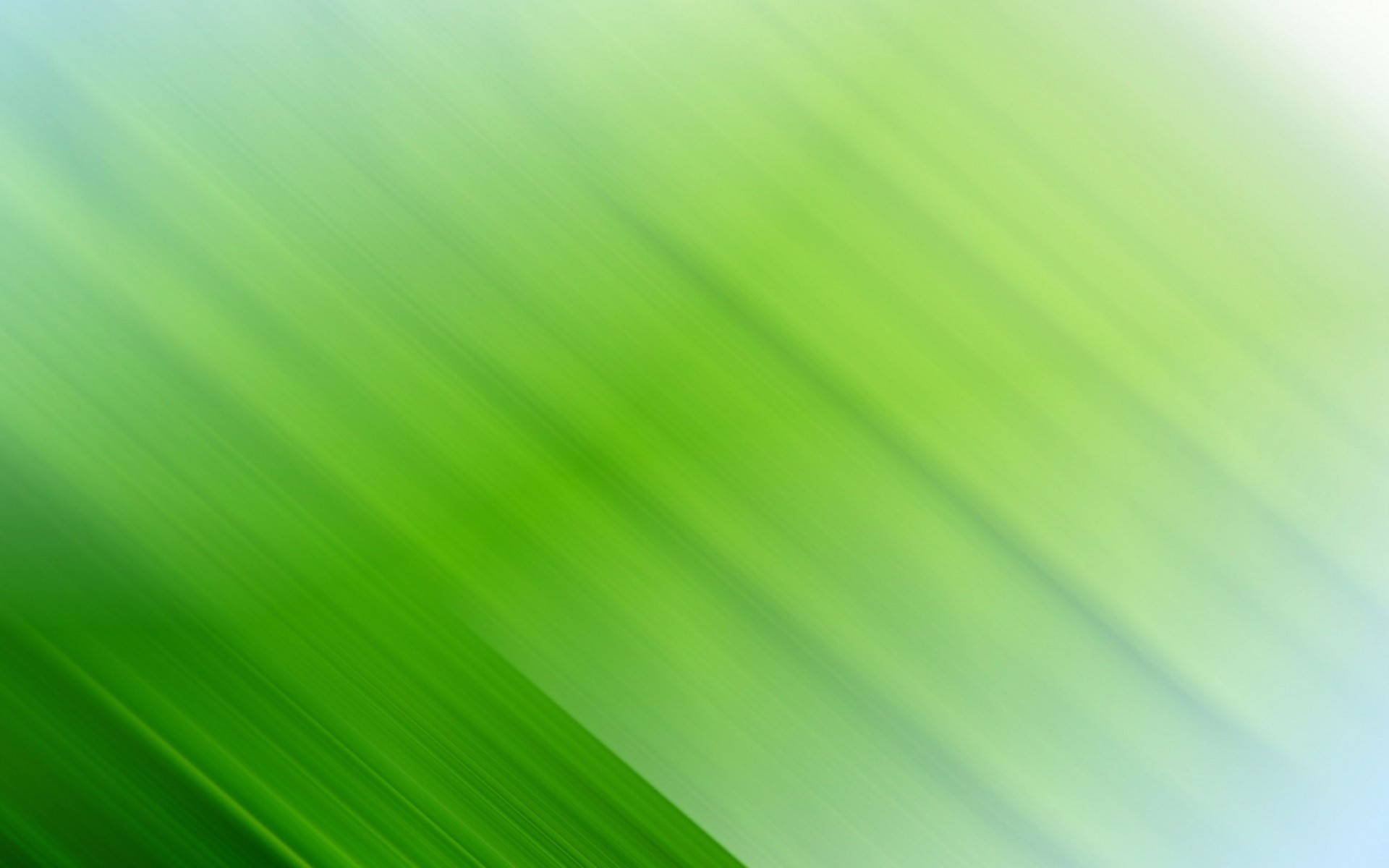 4K Green Wallpapers High Quality