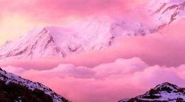 4K Pink Wallpaper Gallery