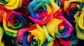 4K Rainbow Photo