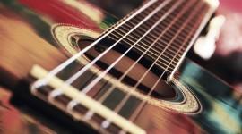4K Strings Photo Free