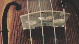 4K Strings Wallpaper For IPhone