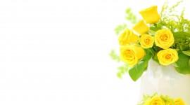 4K Yellow Flowers Wallpaper Full HD#1