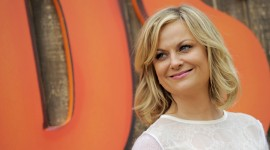 Amy Poehler Best Wallpaper