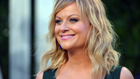Amy Poehler wallpapers high quality