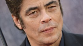 Benicio Del Toro High Quality Wallpaper