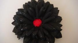 Black Flowers Photo Free
