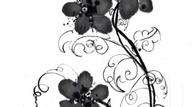 Black Flowers Wallpaper For IPhone