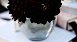Black Flowers Wallpaper For PC