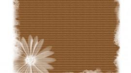 Brown Flowers Image