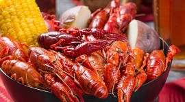 Crayfish Cooking Best Wallpaper