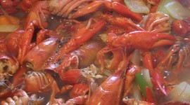 Crayfish Cooking Photo