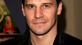 David Boreanaz Wallpaper Background